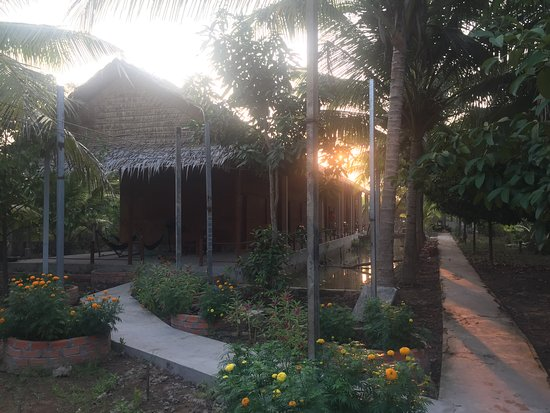 Cai Rang, Вьетнам: The bungalows