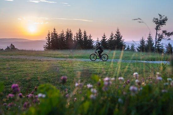 Rogla, Словения: Sali sulla bicicletta e lasciati guidare in una delle tante avventure ciclistiche in Slovenia. 😀