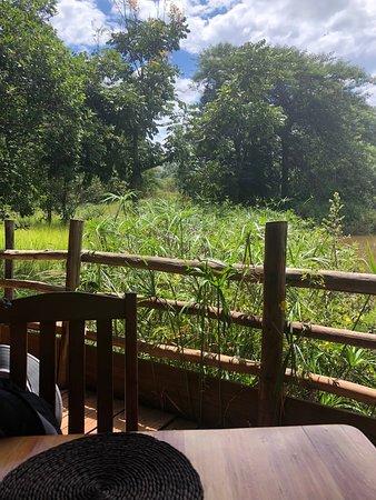 Mlilwane Wildlife Sanctuary ภาพถ่าย