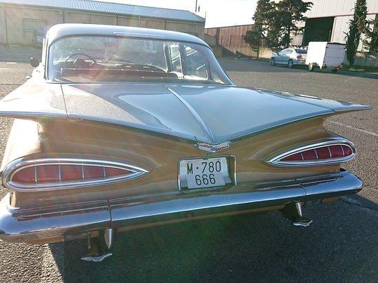 Impala en cembranos city 😛