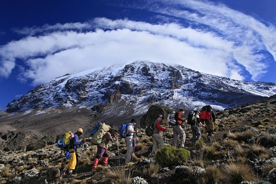 Machame, Танзания: Tranquil Kilimanjaro