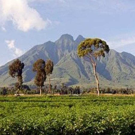 Experience the rare element with viapoafrican safaris on a 6 Day Mount Elgon Hiking Adventure. info@viapoafricansafaris.com +256780660625