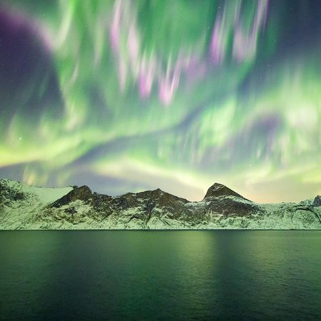 Night Lights - Northern Lights and Night Sky Experiences