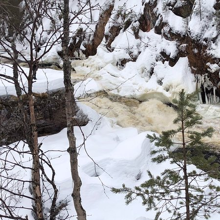 Oulanka National Park ภาพถ่าย