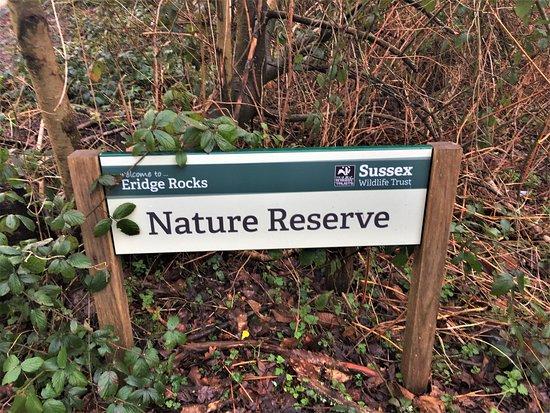 Eridge Rocks Nature Reserve