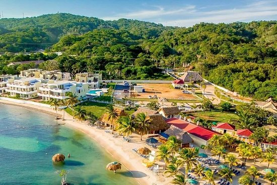 Scott Roatan Tours