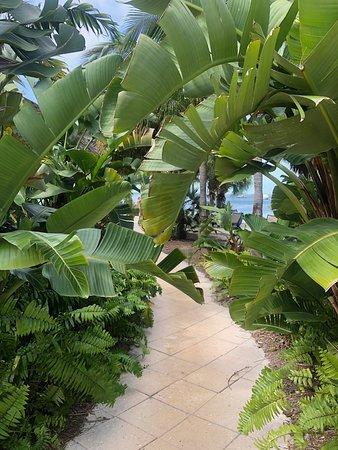 Flora & Fauna Paradise