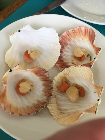 Shelly Beach, Австралия: They ran out of oysters so replaced them with these that were meant to be fresh scallops in garlic butter. They were in fact cold partially thawed balls of rubber which were inedible