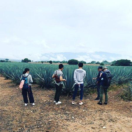 Jalisco Trip