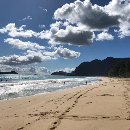 Customised private tour of Oahu! Photo