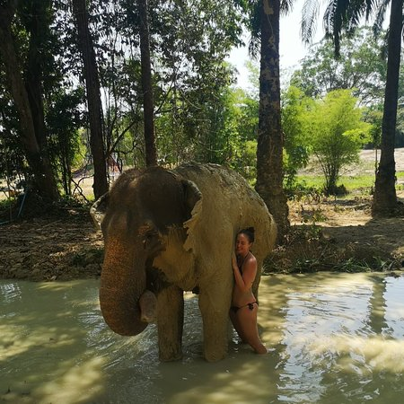 The Elephant Sanctuary Krabi Thailand