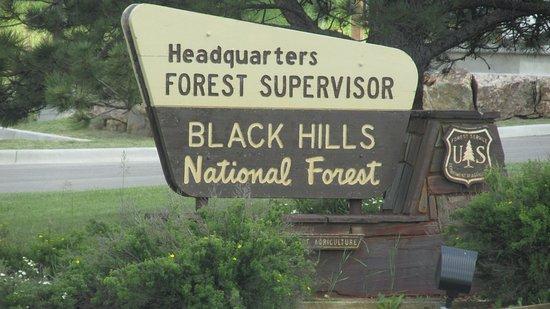 Блэк-Хилз, Южная Дакота: Black Hills