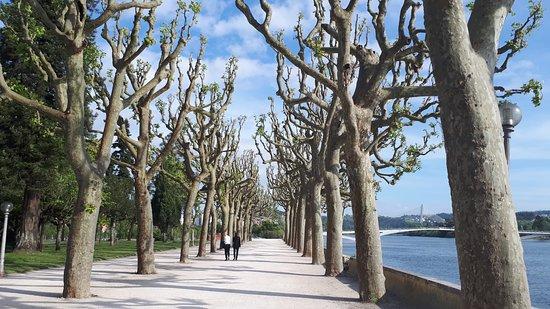 Coimbra District, Portugal: Paisagem que muda a cada estação, todas belissimas