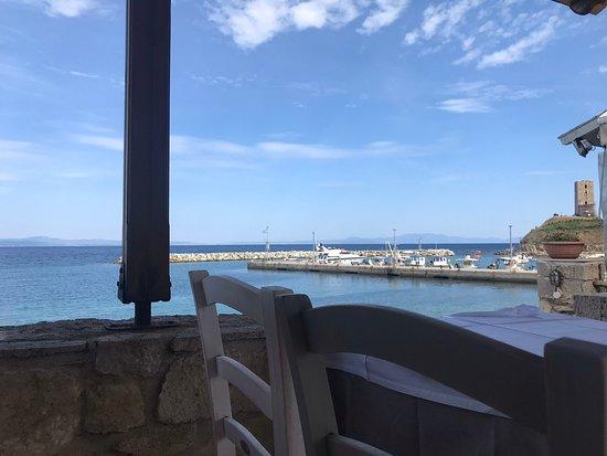 Nea Fokaia, Grecia: Ελάτε να απολαύσετε τα θαλασσινά μας με μια καταπληκτική θέα