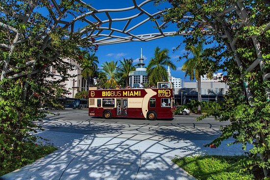 Passa al Miami All-Inclusive Pass con Hop-on Hop-off e Zoo Miami