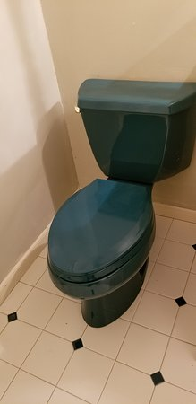 Ripon, WI: 1978 Green Toilet and Sink..... still works like a charm.