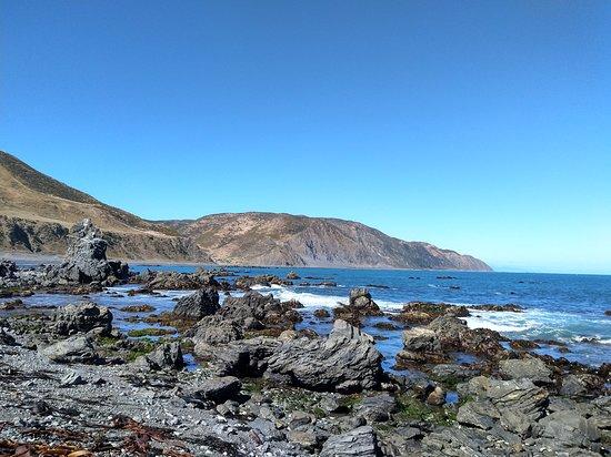 Seal Coast Safari Tour by 4WD Fotografie