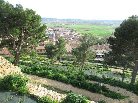 Cerco de Artajona Navarra Turismo