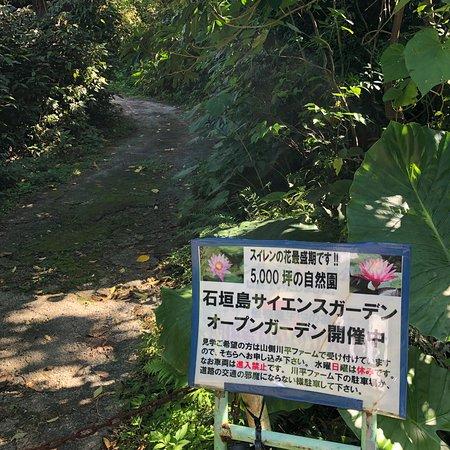 Ishigaki Island Science Garden