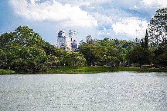 São Paulo Private City Tour fra Santos Cruise Terminal