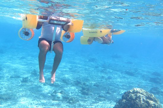 Snorkel Kat at Dzul Ha Reef