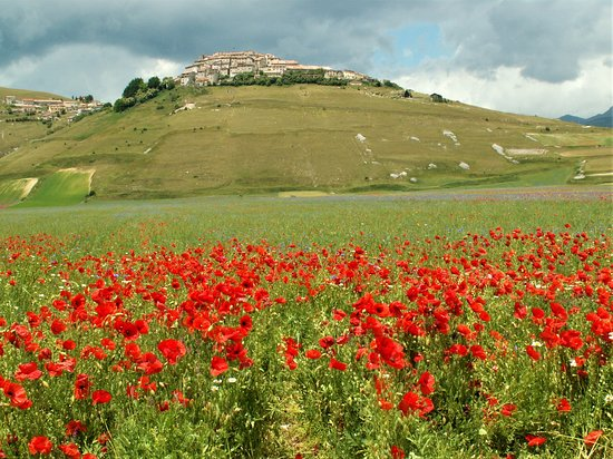 Кастелуччио-ди-Норчия, Италия: Castelluccio di Norcia, prima del terremoto . Una speranza che rinasca e che finito tutto questo incubo …. si possa andare ad ammirare tale magnificenza .