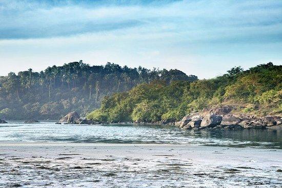 Divar Island Tour from Goa