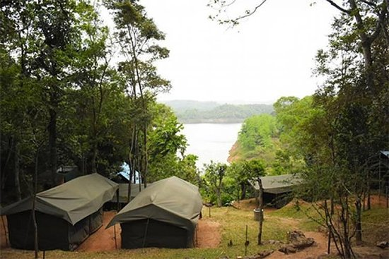 1 Night 2 Days at Belihuloya Adventure Camp tour From Colombo or...