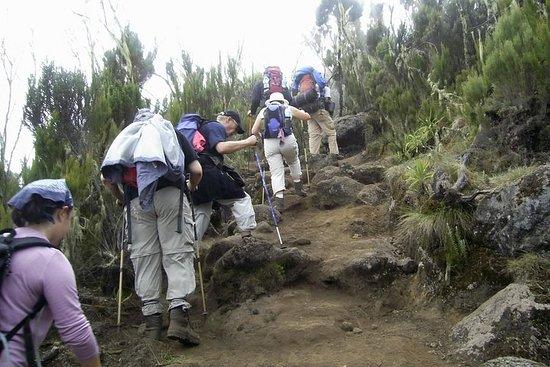 Trekking no Quênia por 5 dias - (Rota...