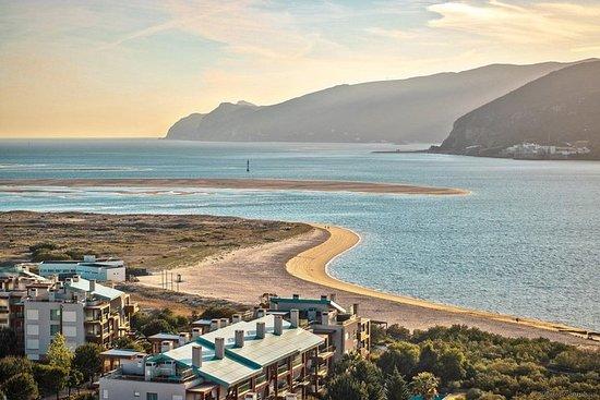 Playa de Troia y vino