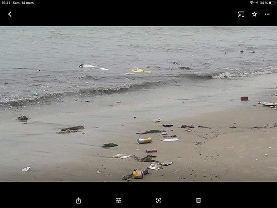Ocean Place Mui Ne Resort: Hôtel confortable, mais ne pas envisager se baigner dans la mer. Plage complètement polluée. Le personnel nettoie le matin mais laisse le tas à côté donc dès que la mer monte tout repart à la mer.