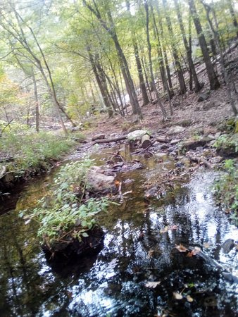 Lake Catherine, AR: Creek walking up to waterfall