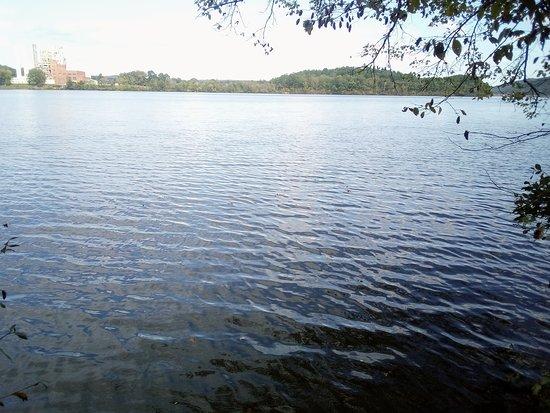 Lake Catherine, AR: The lake