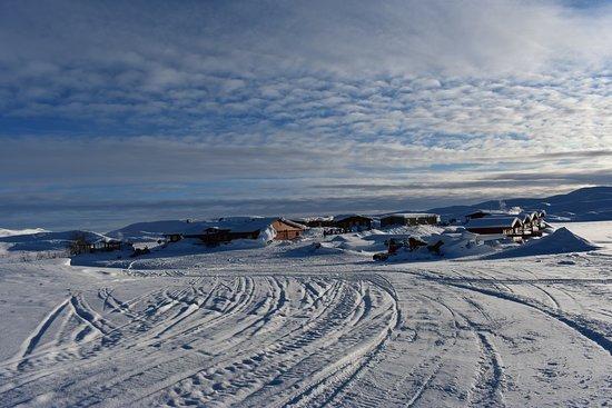 Paxson, AK: Grounds