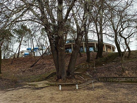 Wagrowiec, Polonia: Widok od strony Jeziora Durowskiego