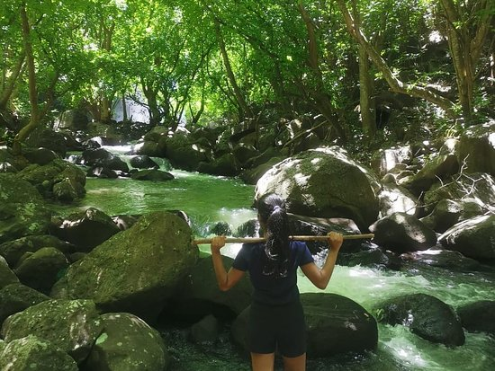 Pont Colville: A hidden waterfall in Mauritius ❤🌿 #islandgirl