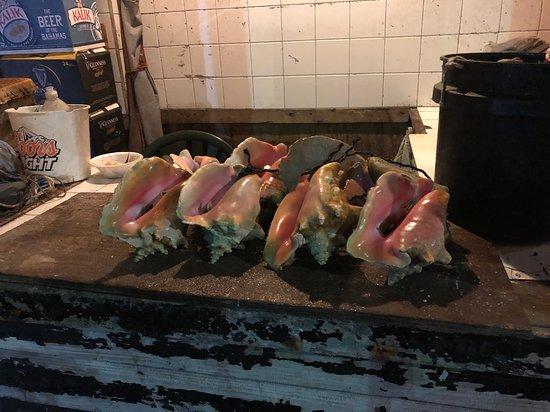 Potters Cay Fish Shacks: Fresh conch