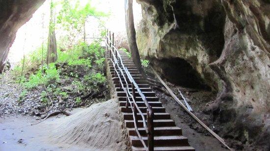 Шимони, Кения: Treppe in die Slave Cave