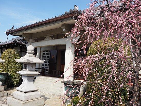 Jippo-ji Temple