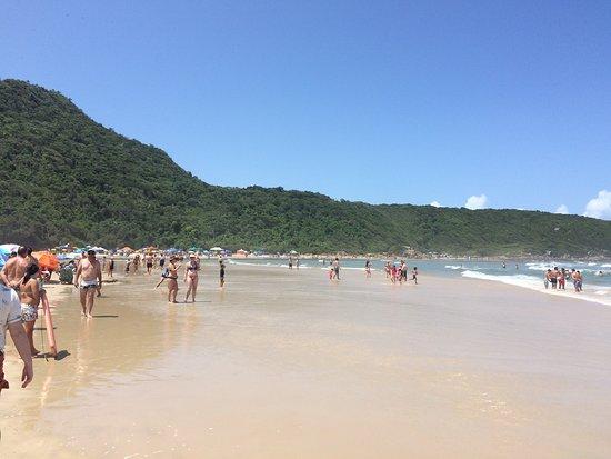 Pinheira: Orla da praia da Guarda do Embau, SC.