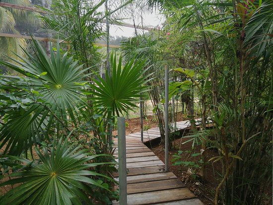 Sarteneja, Belize: Shipstern Nature Reserve