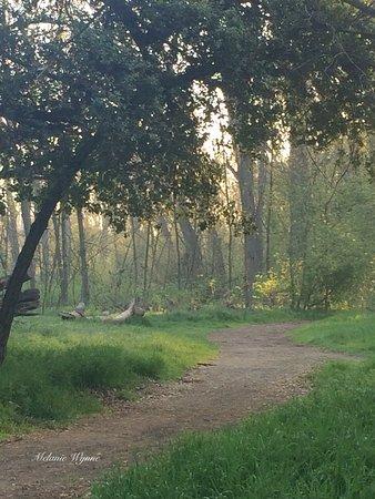 Ripon, Californie: Stunning views, beautiful outdoor walk.