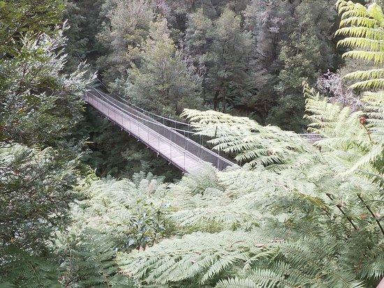 Tarra Valley, Австралия: Suspension bridge in the Tarra Bulga National Park
