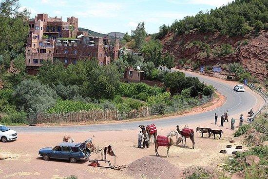 Delt gruppedagstur fra Marrakech til...