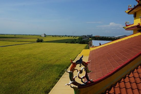 PRIVATE TOUR: RICEFIELD, fish village...