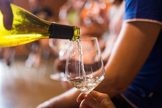 Región vinícola del Empordà: 2500 años...