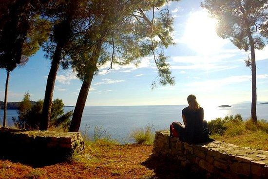 Escursione nella baia di Gradina - Navigare Necesse Est