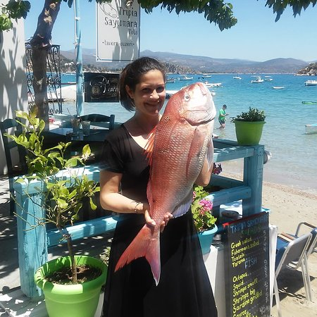 Sea bream from fisherman John!!