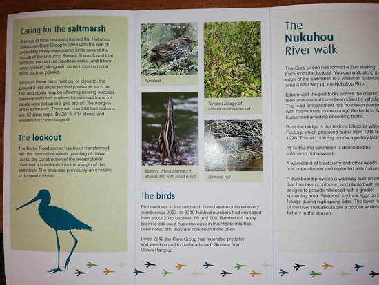 Nukuhou Saltmarsh brochures available at the lookout point