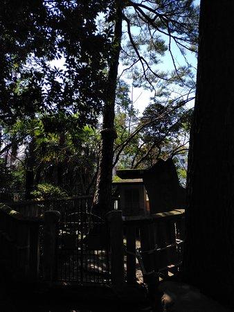 洗足池の畔にある立派な山門のあるお寺